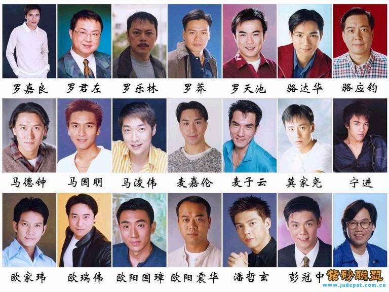 香港艺人收入排名_香港tvb艺人大全(男演员)